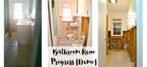 demo-demolition-bathroom-reno-renovation-progress