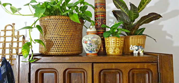 Where To Buy: Trendy and Cheap Planter Pots