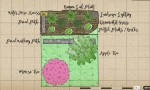Curb Appeal: How To Plan A Garden