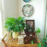rattan bar cart with plants and imari plates