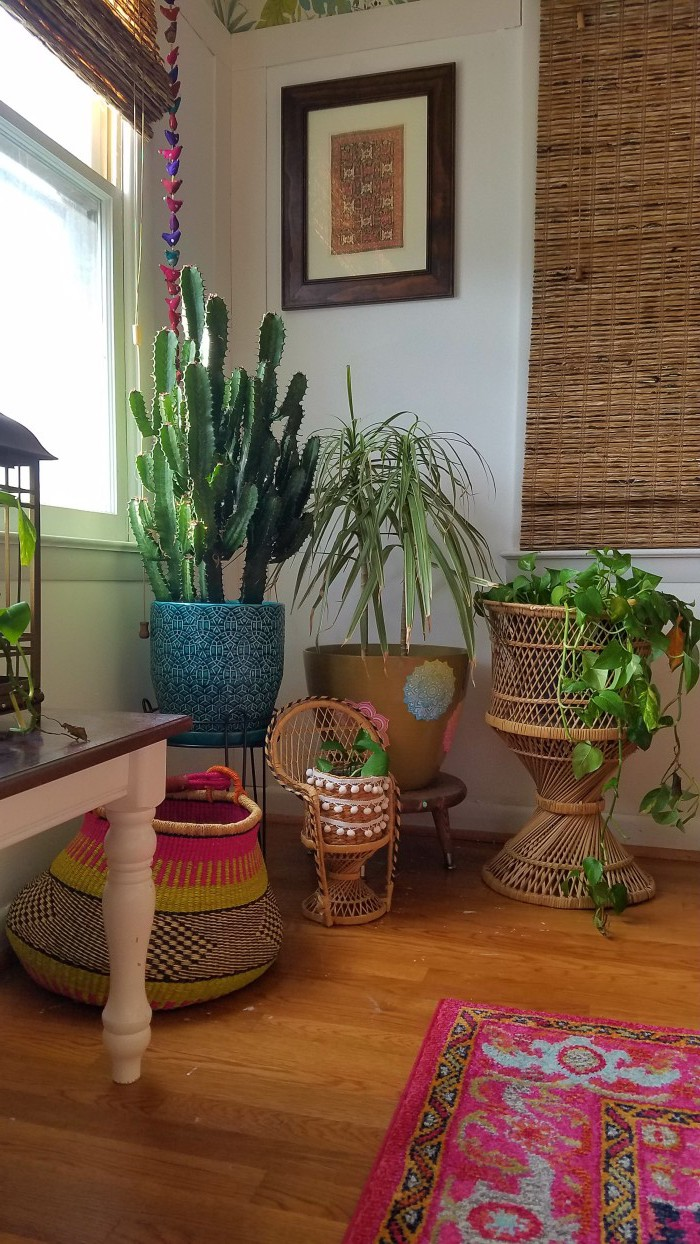 Plant Filled and Focused | Pink and Green | Tropical and Modern | Global and Thrifted | Dining Room | Airy Bohemian Dining Room Decor | Eclectic Boho Cali Style