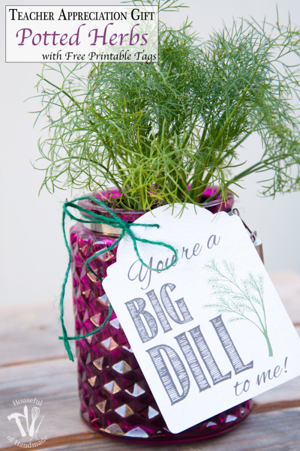 Teacher-Appreciation-Gift-Potted-Herbs-with-Tags-Pinnable